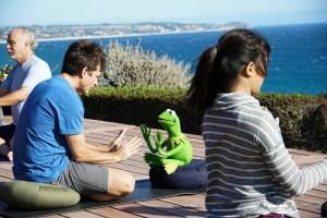 Bateman destroys Kermit's chill.