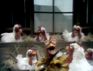 T. R. and the Muppet Chickens