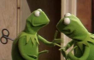 Kermit meets his froggelganger.