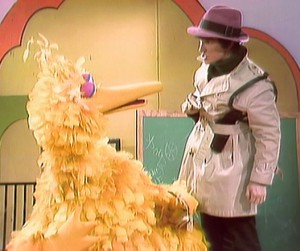 Fargo helps Big Bird.