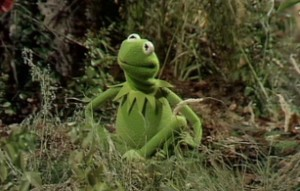 Kermit works through his emotions in song.