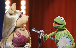 "The Muppets 1.11: ""Swine Song"""