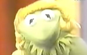Kermit in a wig.